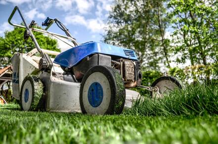 Picture of Lawn Mowing Cairns