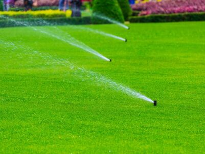 Picture of watering lawn in Cairns